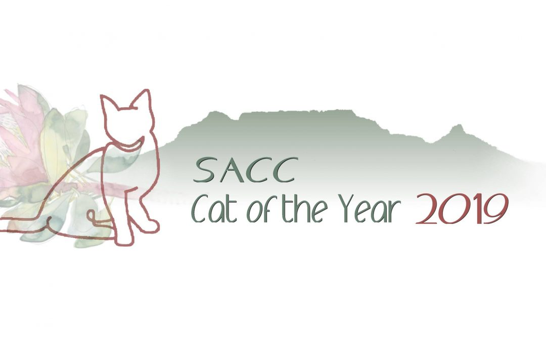 SACC Cat of the Year 2019 Results