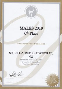 CFSA COTY 2019 - 6th Placed Male Bell-Aimee Ready Fot It