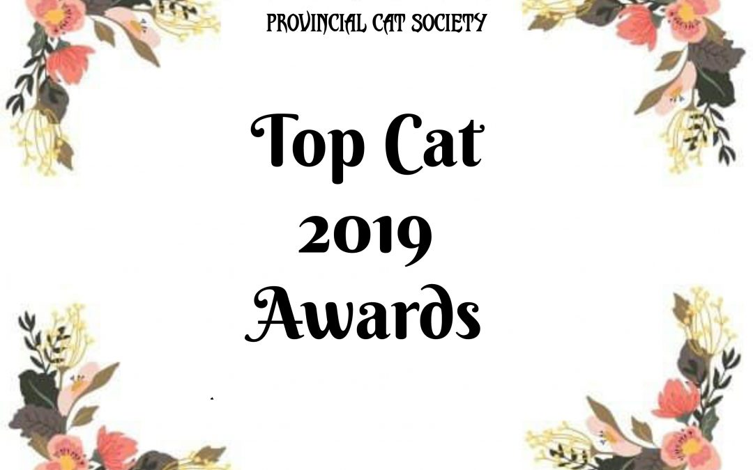 PCS Top Cat Awards 2019
